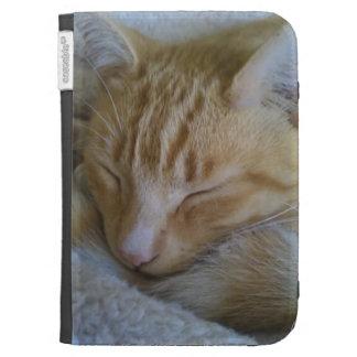 El gatito soñoliento enciende la caja