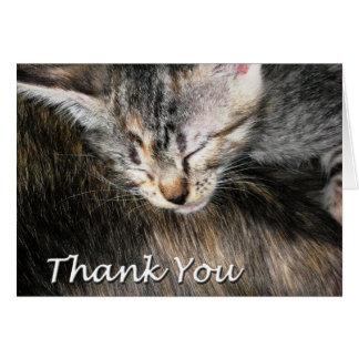 El gatito y el gato le agradecen tarjeta de felicitación