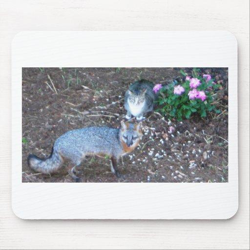 el gato ama el zorro alfombrillas de ratón