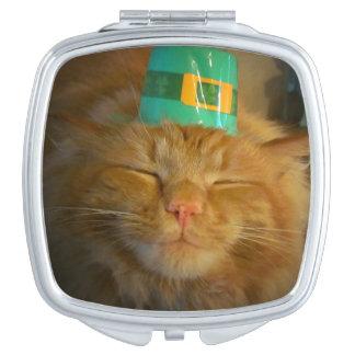 El gato anaranjado irlandés verde quiere beso espejos de maquillaje