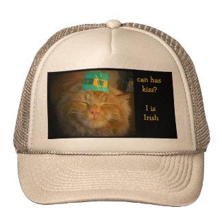 El gato anaranjado irlandés verde quiere beso gorra