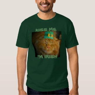 El gato anaranjado irlandés verde quiere beso playera
