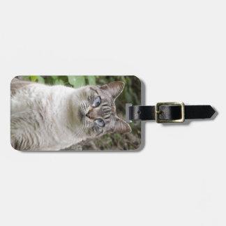 El gato bizco etiquetas de equipaje