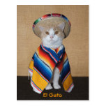 El Gato Cat in Sombrero and Serape Post Cards