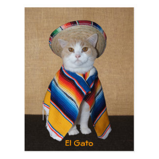 El Gato Cat in Sombrero and Serape Postcard