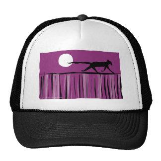 El gato cena hacia fuera gorra