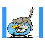 El gato con su cabeza se pegó en un fishbowl postal