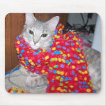 El gato conseguido estilo tapetes de raton