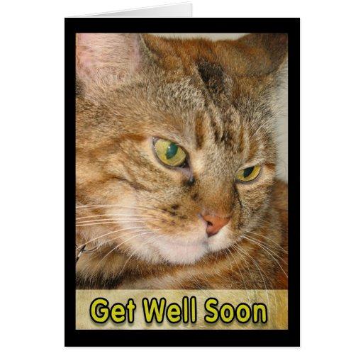 el gato consigue bien pronto tarjeta de felicitación