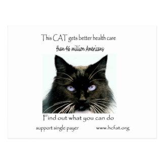 El gato consigue un mejor cuidado postal