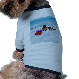 El gato da lejos los regalos en navidad ropa para mascota