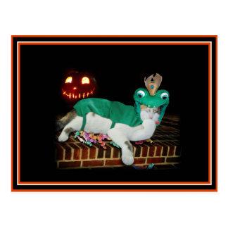 ¡El gato de Halloween es Getting las mercancías! Postal