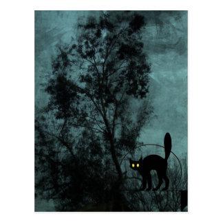 El gato de la bruja