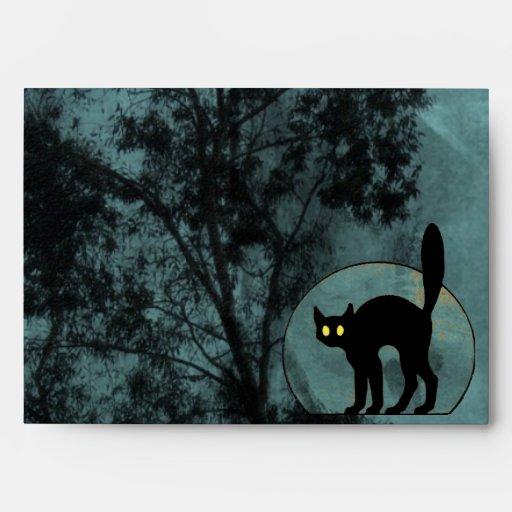 El gato de la bruja sobre