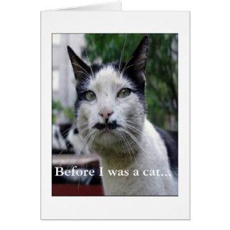 El gato de las lecciones me enseña tarjeta de felicitación