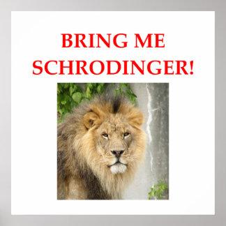 el gato de los schrodinger póster
