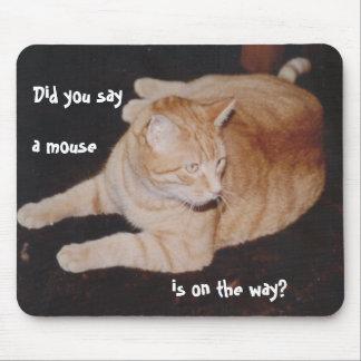 El gato de Mousepad miente en la espera para el ra Tapete De Ratones