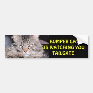 El gato de parachoques está mirando la PUERTA POST Pegatina Para Auto