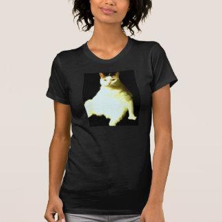 El gato de presentación camisas