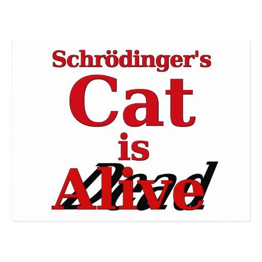 El gato de Schrodinger es muertos vivos Postal