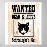 El gato de Schrodinger querido Impresiones