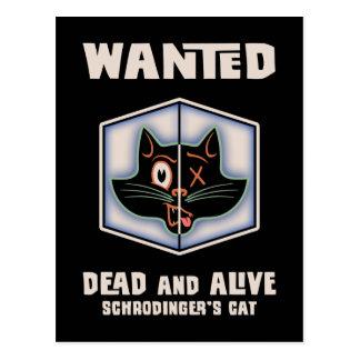 El gato de Schrodinger querido Postales