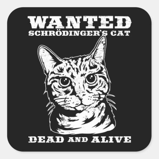 El gato de Schrodinger quiso a muertos o vivo Pegatinas Cuadradases Personalizadas