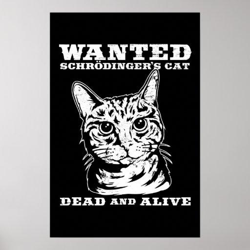 El gato de Schrodinger quiso a muertos o vivo Póster