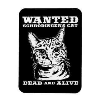 El gato de Schrodinger quiso a muertos o vivo Rectangle Magnet