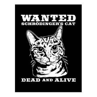El gato de Schrodinger quiso a muertos o vivo Postal