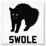 El gato de Swole es gatito Swole Arte Con Fotos