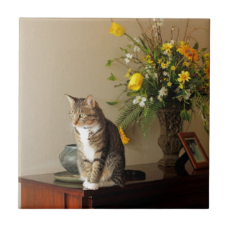 El gato de Tabby negro de Brown que se sienta en p Azulejo Cuadrado Pequeño