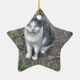 El gato adorno de cerámica en forma de estrella