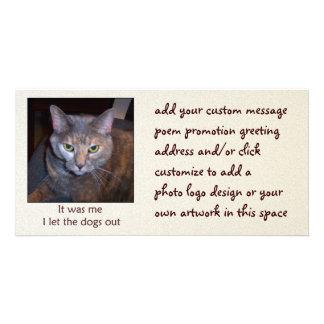 El gato dejó los perros hacia fuera tarjeta fotografica personalizada
