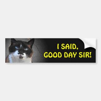 El gato del bigote le dice buen día, sir pegatina para auto