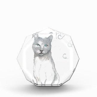 El gato del blanco gris soña los regalos de los am