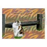 El gato del gatito del calicó que piensa en usted  felicitación