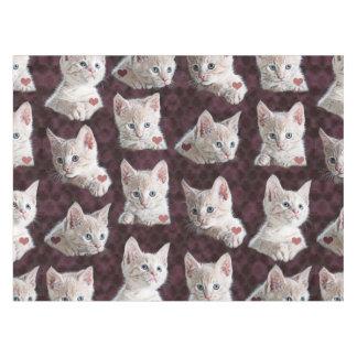 El gato del gatito hace frente al modelo con mantel