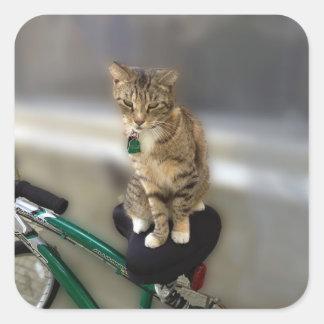 El gato del gatito quiere ir a Biking Pegatina Cuadrada