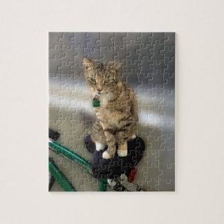 El gato del gatito quiere ir a Biking Rompecabeza
