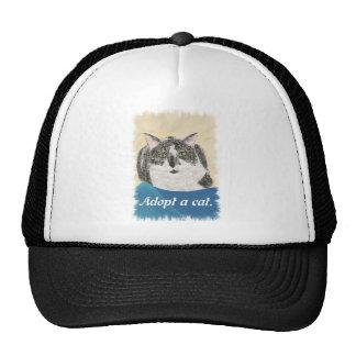 El gato del smoking adopta los gorras de una