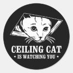 El gato del techo le está mirando etiqueta