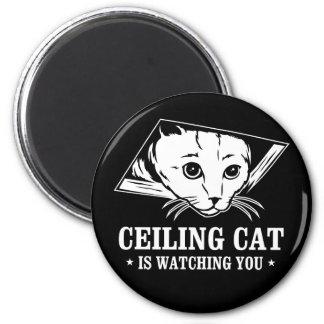 El gato del techo le está mirando imán redondo 5 cm