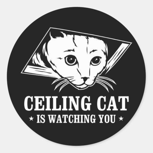 El gato del techo le está mirando pegatina redonda