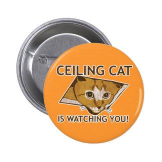 ¡El gato del techo le está mirando! Pin Redondo De 2 Pulgadas