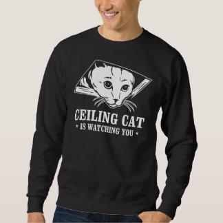 El gato del techo le está mirando sudadera