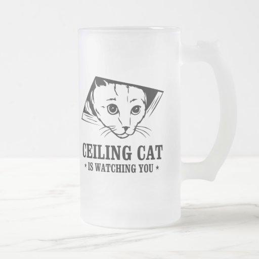 El gato del techo le está mirando taza cristal mate