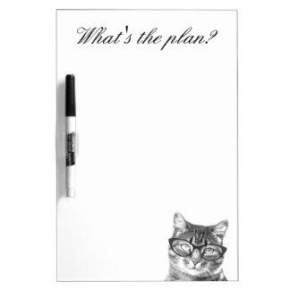 El gato divertido con los vidrios seca al tablero  tableros blancos