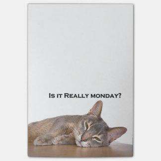 El gato divertido de Brown del abisinio odia lunes Notas Post-it®