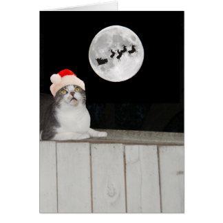 El gato divertido ve Santa Tarjeta De Felicitación